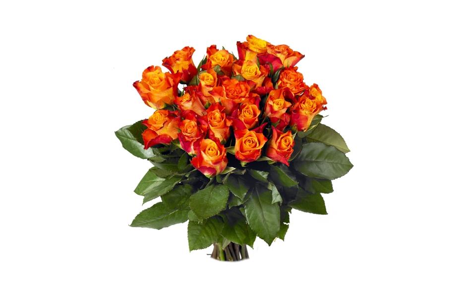 Brass e de 20 roses blanches for Bouquet de fleurs orange et jaune