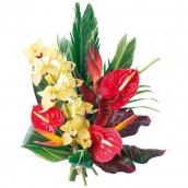 livraison de fleurs nantes et france en 24h fleurs exotiques fleurs design. Black Bedroom Furniture Sets. Home Design Ideas