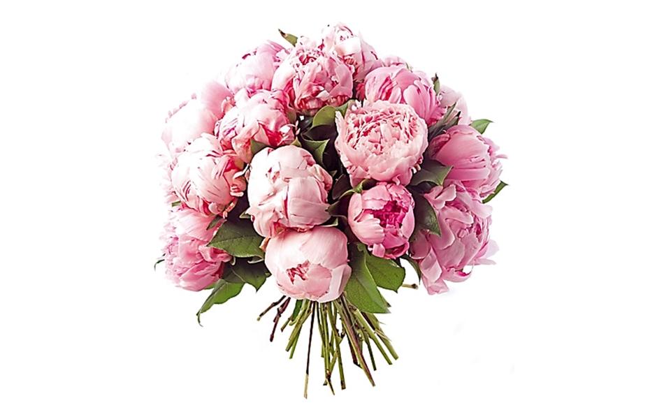 bouquet plume pivoine bouquet de mari e original mariage r tro pictures to pin on pinterest. Black Bedroom Furniture Sets. Home Design Ideas