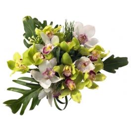 http://fleursetdesign.com/boutique/154-thickbox_choco/bouquet-jardins-d-ailleurs-livraison-fleurs-bouguenais-exotique-orchidee.jpg