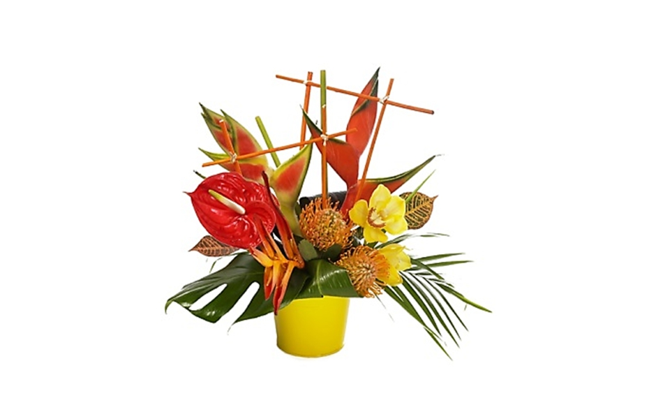 Bouquet Tha Lande