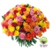 Bouquet 50 roses multicolores