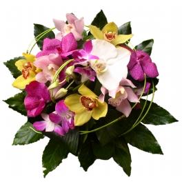 http://fleursetdesign.com/boutique/80-thickbox_choco/bouquet-manille-livraison-fleurs-exotique-orchidee-phalenopsis-vanda-cymbidium-dindrobium-bouguenais.jpg