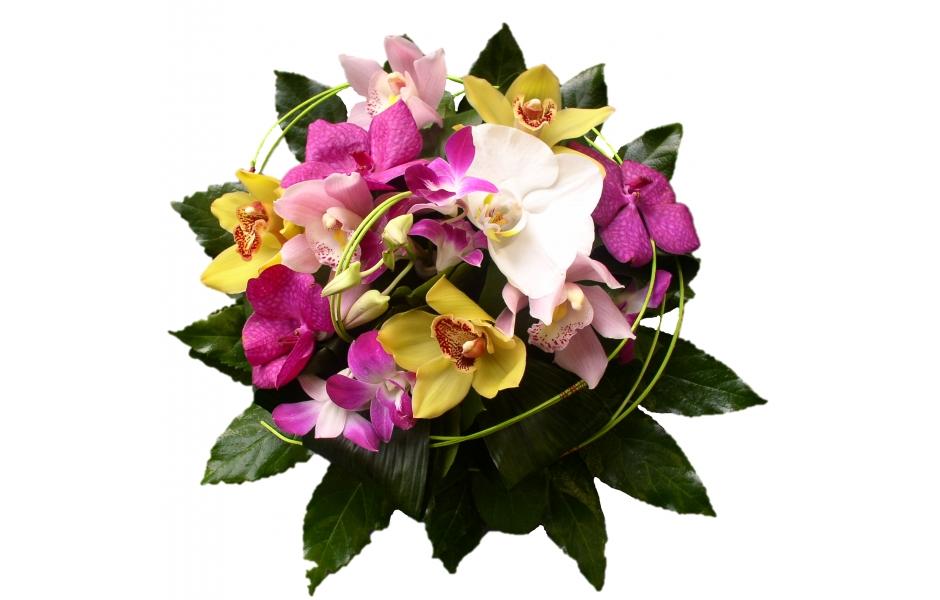 photos de bouquets de fleurs exotiques images. Black Bedroom Furniture Sets. Home Design Ideas