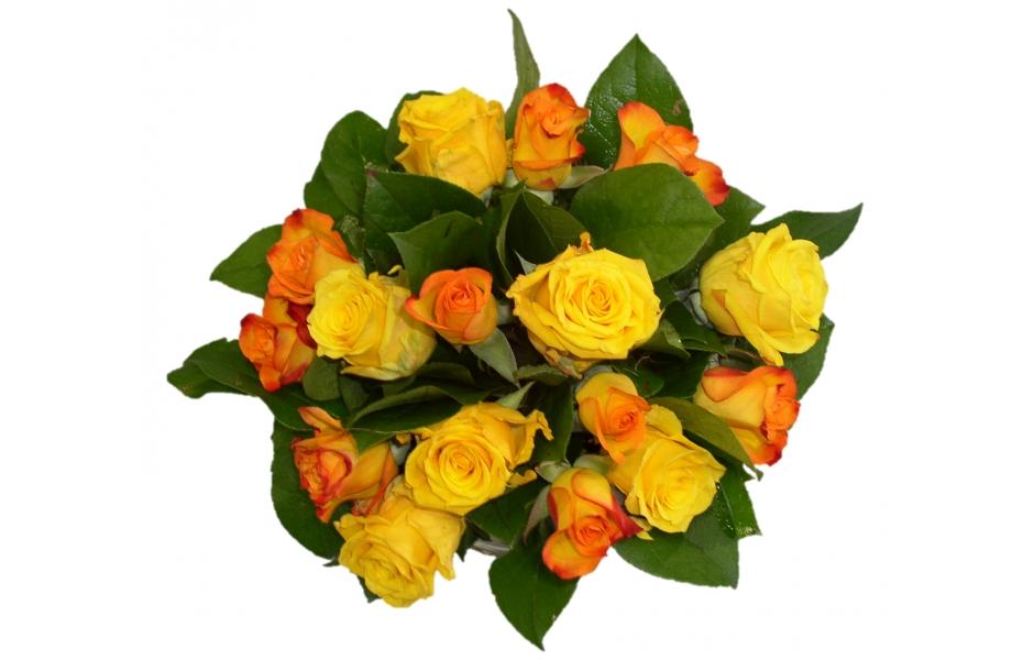 Bouquet rond de 15 roses roses for Bouquet de fleurs orange et jaune